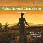 Weber, Hummel, Mendelssohn: Flute Trios by Ferenc Bognar