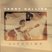LifeTime by Terry Callier