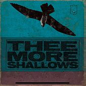 Book of Bad Breaks by Thee More Shallows