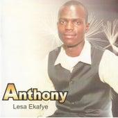 Lesa Ekafye by Anthony