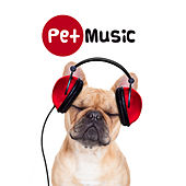 Play & Download Through a Dog's Ear – Classical Music to Calm Your Canine Companion, Therapy Music for Pets by Various Artists | Napster