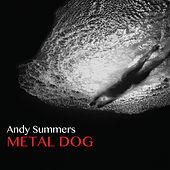 Metal Dog von Andy Summers