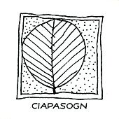 Ciapasogn by I Musici