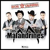 Play & Download Hecho En California by Los Malandrines | Napster