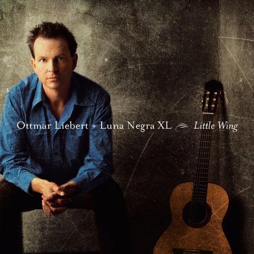 Play & Download Little Wing by Ottmar Liebert | Napster