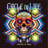 Cycle of Life by Various Artists