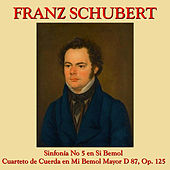 Play & Download Franz Schubert Sinfonía No. 5 y Cuarteto de Cuerda en Mi Bemol by The Ensemble Villa Musica | Napster