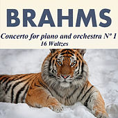 Play & Download Brahms - Concerto for piano and orchestra Nº 1 - 16 Waltzes by Karin Lechner | Napster