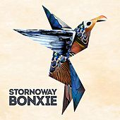 Play & Download Bonxie by Stornoway | Napster