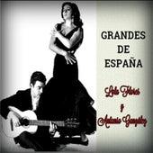 Play & Download Grandes de España by Antonio González | Napster