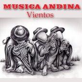 Musica Andina - Vientos by Los Huayra
