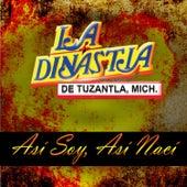 Play & Download Asi Soy, Asi Naci by La Dinastia De Tuzantla Mich | Napster
