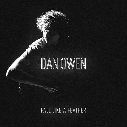 Fall Like a Feather by Dan Owen