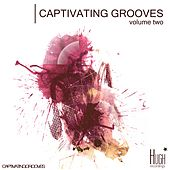 Play & Download Captivating Grooves, Vol. 2 by Various Artists | Napster