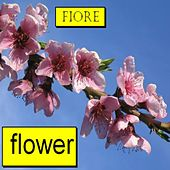 Play & Download Flower by Fiore | Napster