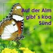 Play & Download Auf Der Alm Gibt´s Koa Sünd - Echte Volksmusik - Bayern - Bavaria by Zharivari | Napster