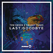 Play & Download Last Goodbye by Swanky Tunes | Napster