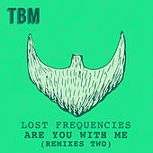 Are You With Me (Remixes II) de Lost Frequencies
