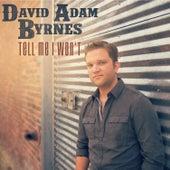 Tell Me I Won't by David Adam Byrnes