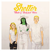 Play & Download Shelter - Single by Vaski | Napster