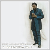 In The Overflow, Vol. II by Stephen Hurd