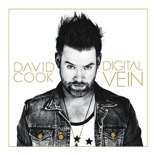 Digital Vein von David Cook
