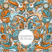 The Paradox by Jacob Banks