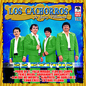 Play & Download 22 Exitos de Juan Villarreal, vol. 2 by Los Cachorros de Juan Villarreal | Napster