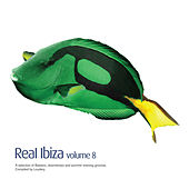 Real Ibiza, Vol. 8 by Various Artists
