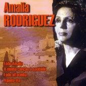 Play & Download Amalia Rodriguez by Amalia Rodriguez   Napster