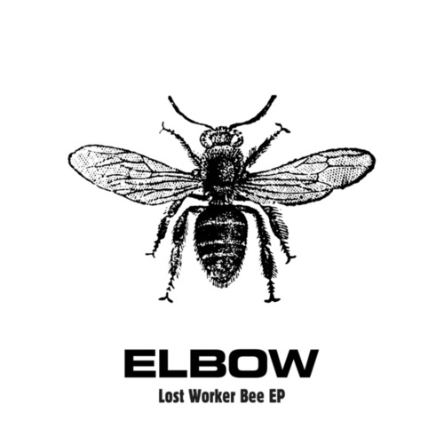 Lost Worker Bee - EP by Elbow