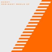 Ordinary World by Dusky