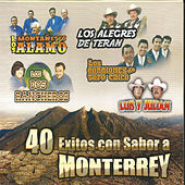 40 Exitos Con Sabor a Monterrey by Various Artists