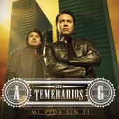 Mi Vida Sin Ti by Los Temerarios
