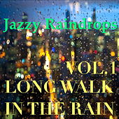 Jazzy Raindrops: Long Walk In The Rain, Vol.1 by Various Artists