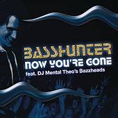 Now You're Gone (feat. DJ Mental Theo's Bazzheadz) by Basshunter