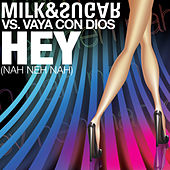 Hey (Nah Neh Nah) by Vaya Con Dios