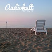 Audiokult Edition 20 von Various Artists