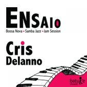Ensaio (Bossa Nova, Samba Jazz, Jam Session) by Cris Delanno