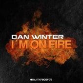 I'm on Fire by Dan Winter