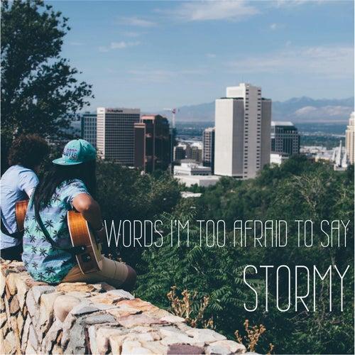 Words I'm Too Afraid to Say de Stormy