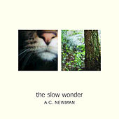 Play & Download The Slow Wonder by A.C. Newman | Napster