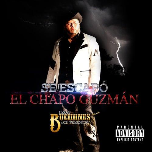 Play & Download Se Escapó El Chapó Guzman by Los Buchones de Culiacan | Napster