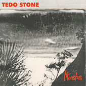 Marshes by Tedo Stone