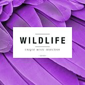 Play & Download Wildlife - Unique Music Selection, Vol. 7 by Various Artists | Napster