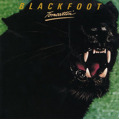 Play & Download Tomcattin' by Blackfoot | Napster