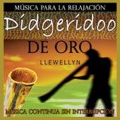 Play & Download Didgeridoo de Oro: Música para la Relajación: Música Continua Sin Interrupción by Llewellyn | Napster