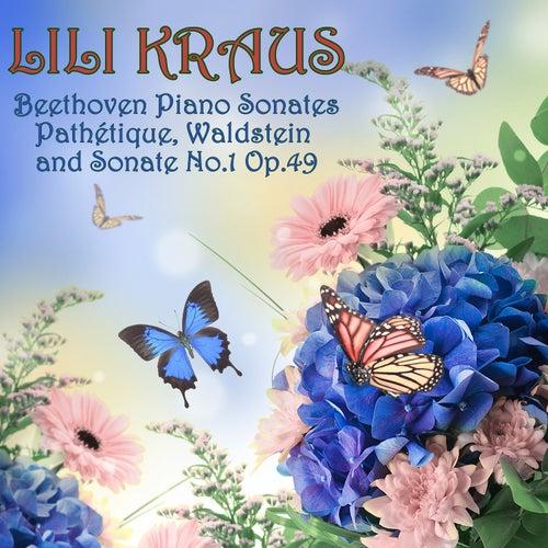 Play & Download Beethoven: Piano Sonatas