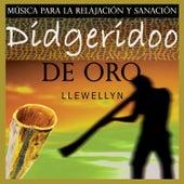 Play & Download Didgeridoo de Oro: Música para la Relajación y Sanación by Llewellyn | Napster