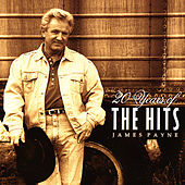 Greatest Hits- 20 Years of the Hits by James Payne